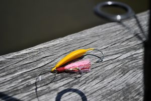 Midday fishing: Passes and bridges, use the Silly Willy with an Uncle Neil custom teaser.