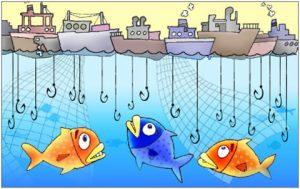 overfishing1